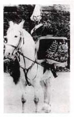 KDG Drum Horse 1897